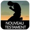 Nouveau Testament ícone