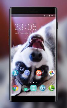 Theme for Nokia X2 Dual SIM Husky Wallpaper poster