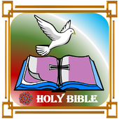 Norwegian Holy Bible icon