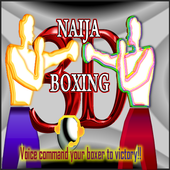 Naija Boxing 3D_ icon