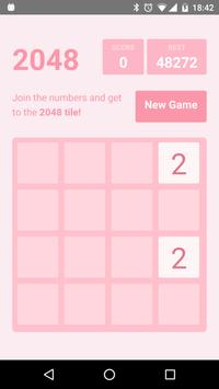 Pinky 2048 poster