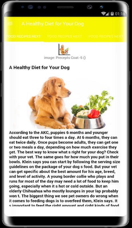 Best pet food food dog and cat descarga apk gratis comer y beber best pet food food dog and cat captura de pantalla de la apk forumfinder Images