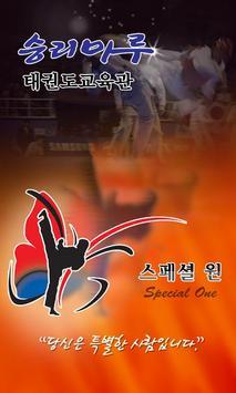 승리마루태권도vt3 poster