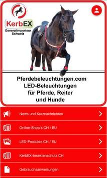 Pferdebeleuchtungen poster