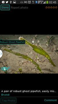 DiveAdvisor - Scuba Diving App screenshot 23