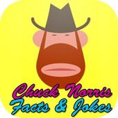 Top 100 Chuck Norris jokes ikona