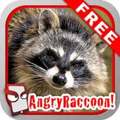 Angry Raccoon Free! icon