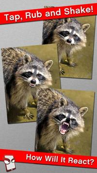Angry Raccoon Free! screenshot 1