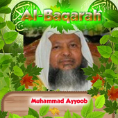 Al Baqarah By Muhammad Ayyoob icon