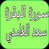 سورة البقرة بصوت سعد الغامدي icon