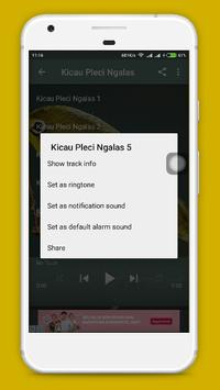 Kicau Pleci Lengkap screenshot 2