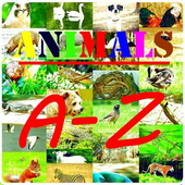 Animals A-Z Wallpapers HD icon
