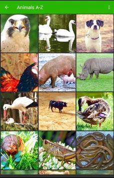 Animals A-Z Wallpapers HD apk screenshot