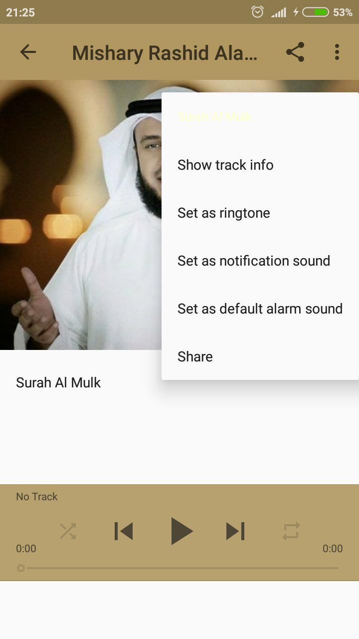 Surah Al Mulk Mp3 Offline For Android Apk Download