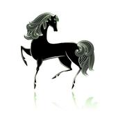 경마 스크린 & 스크린 경마 icon