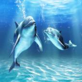 릴게임-바다이야기&야마토모음 icon