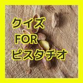 クイズ for ピスタチオ icon