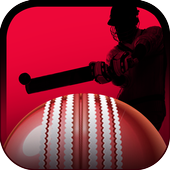 Play It Cricket icon