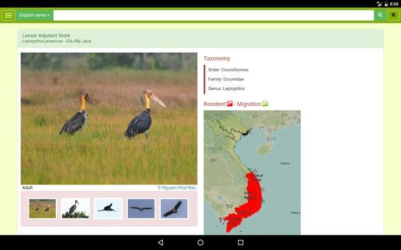 Vietnam Bird Guide apk screenshot