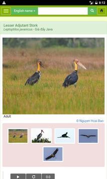 Vietnam Birds apk screenshot