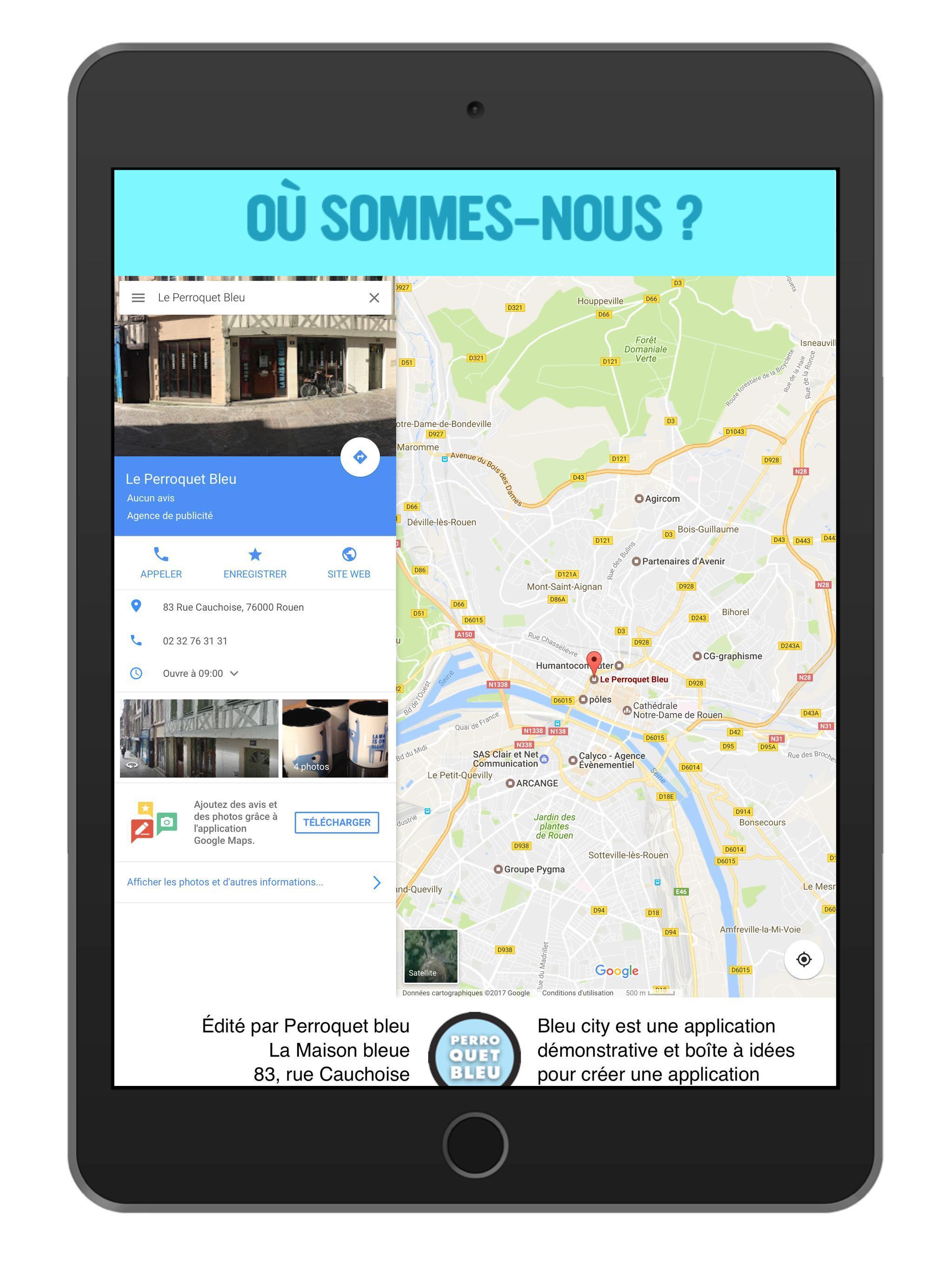 Perroquet bleu poster