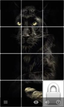 Puzzle of Pictures screenshot 1