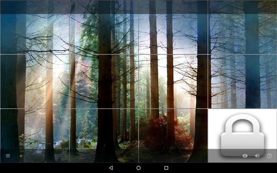 Puzzle of Pictures screenshot 23