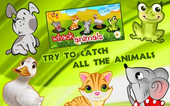 Catch the Animals for kids poster