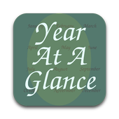 Year At A Glance icon