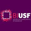 BI USF icon