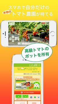 岡山市ふるさと納税(こそふる)こっそり農遠トマト poster