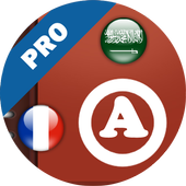 Bronze Dictionary Pro (FR-AR) icon