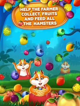 Fruit Hamsters–Farm of Hamsters: Match 3 game Free screenshot 13