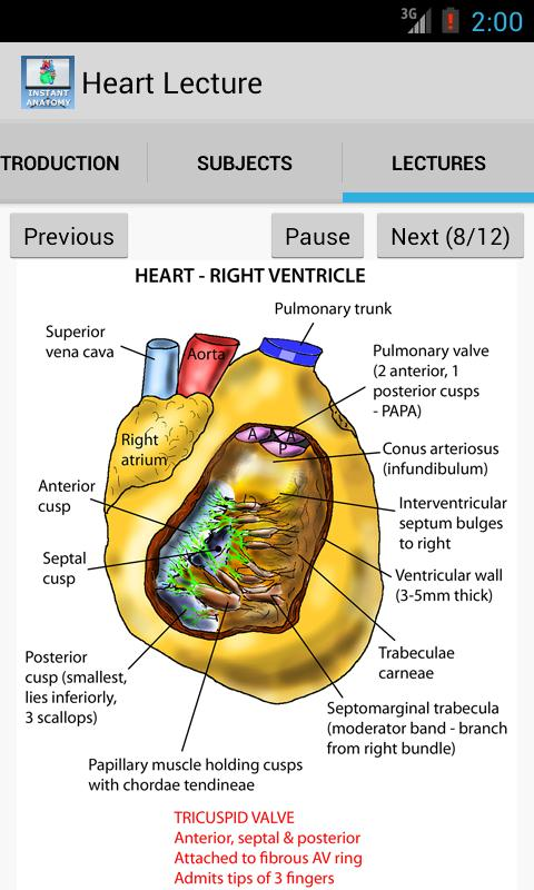 Anatomy Lectures - the heart APK Download - Free Medical APP for ...