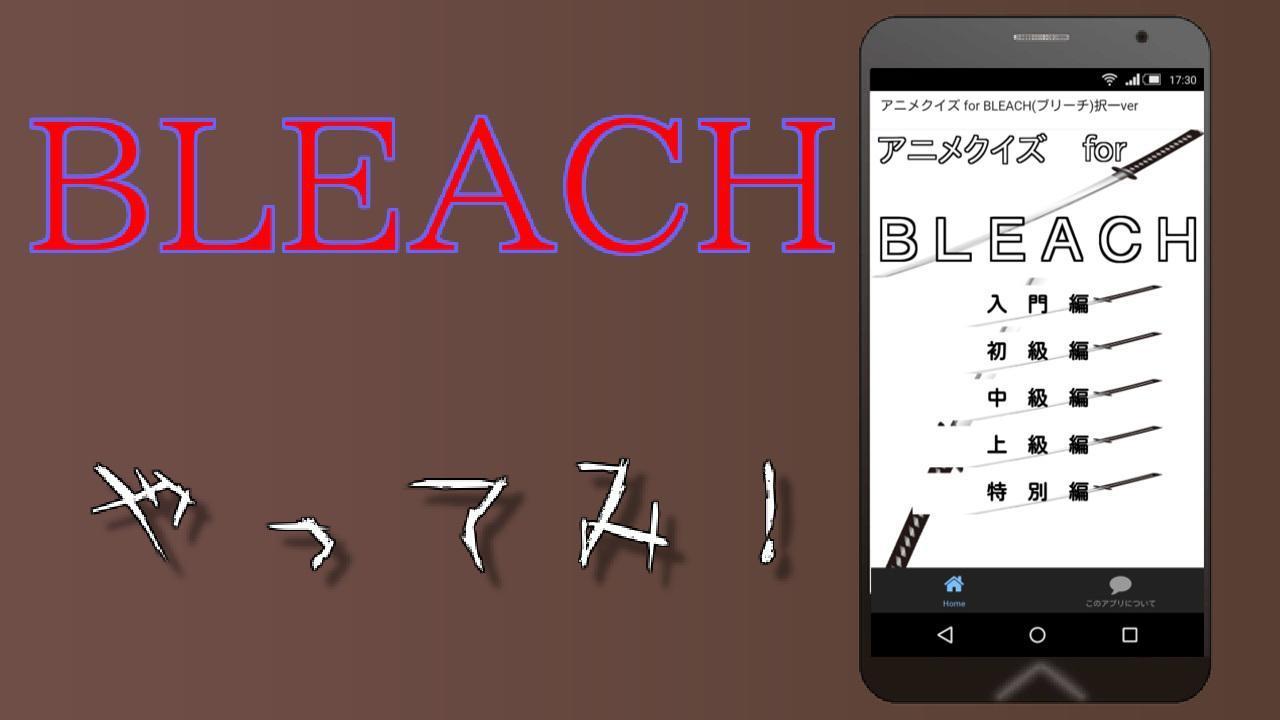 ブリーチアニメ広場