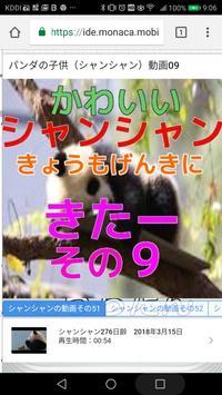 パンダの子供(シャンシャン)動画09 screenshot 5