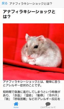 ハムスター病気チェック~健康×育成ゲーム×動物の声~ screenshot 2
