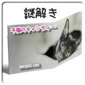 謎解き 子猫のキャンディ icon