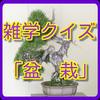 盆栽クイズ講座~老後を楽しむ趣味・友人を見つけよう~-icoon