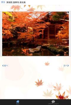 ぶらり京都さんぽ 秋編 apk screenshot
