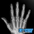 X-Ray Scanner Illusion