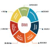 Body Mass Index (BMI) icon