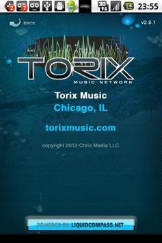 Torix Music screenshot 3