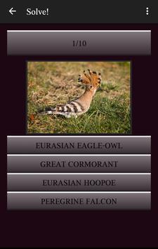 104 Birds Quiz apk screenshot