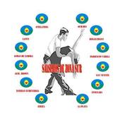 Radio Salseros De Zona Sur icon