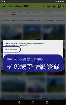 Aida Web Browser screenshot 5