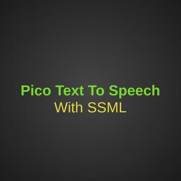 Text To Speech Pico poster