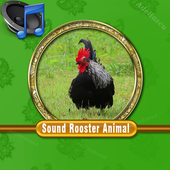 Sound Rooster Mp3 icon
