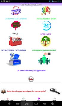 REGION SALES LE MANS screenshot 9