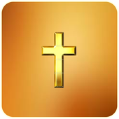 Bible NIV icon